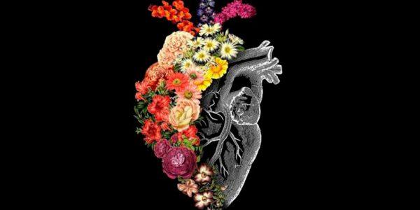 Imagen de la noticia Los infartos también matan a las mujeres